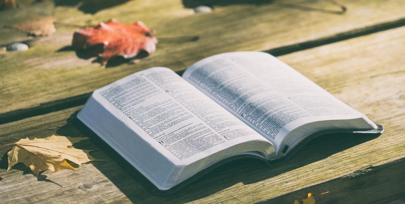 Skal man tage Bibelens ord for gældende?
