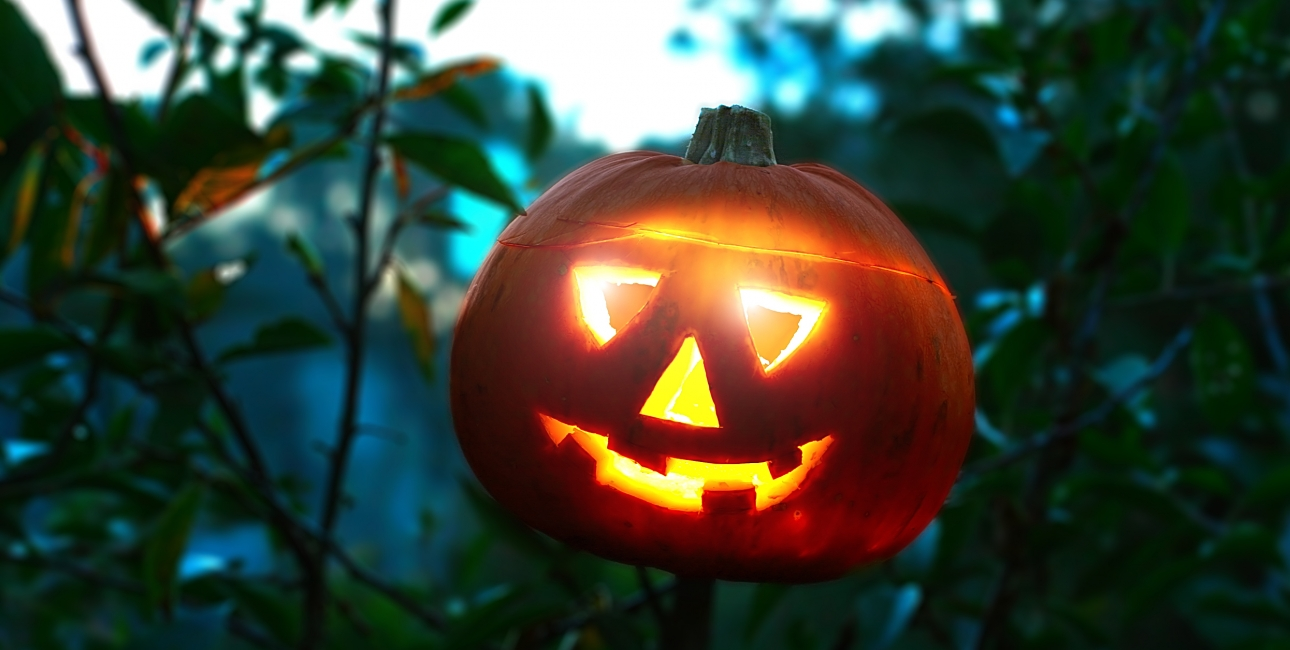Når det er Halloween skærer man græskar ud med uhyggelige ansigter.