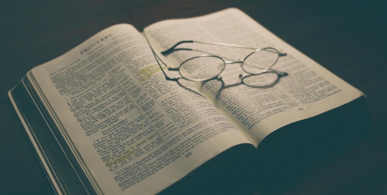 Hvordan bruger jeg bibellæseplanen?