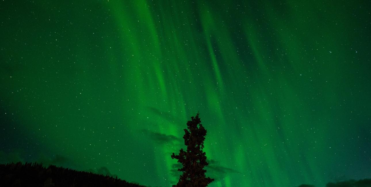 Den engelske originaltitel på Det gyldne kompas er Northern Lights - nordlys. Foto: Pixabay.