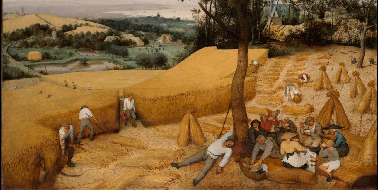 Foto: The Harvesters af Pieter Brueghel den ældre. Wikimedia Commons.