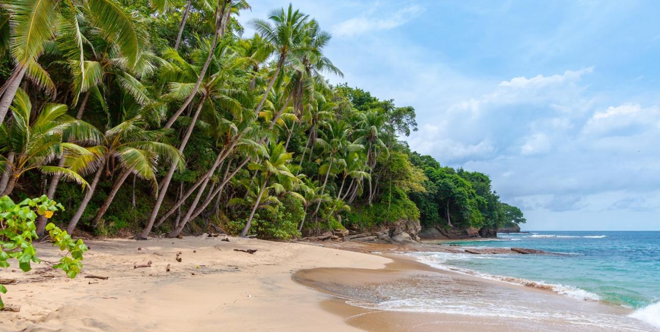Tropisk strand. Et moderne paradis? Foto: Unsplash.