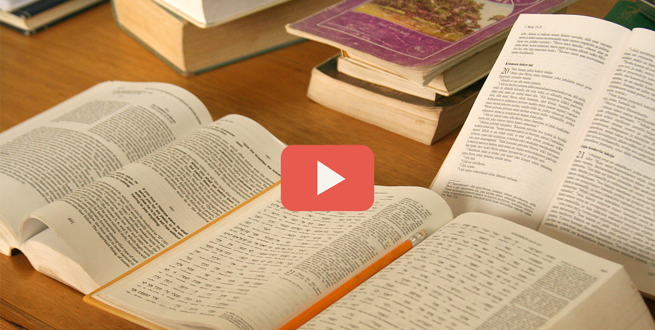 Video artikel - oversættelse